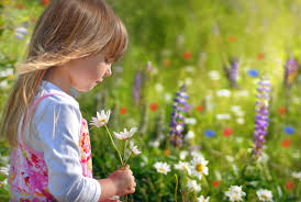 kind bloem